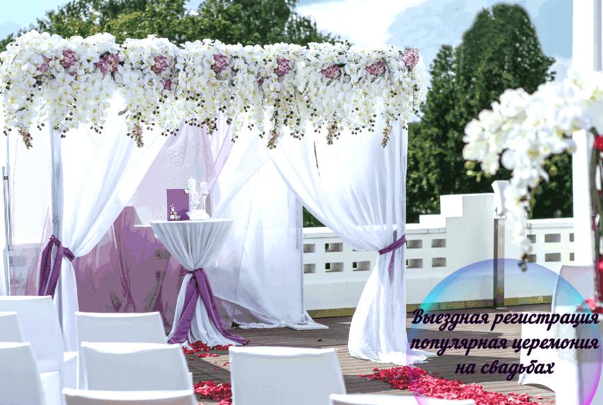 Свадебная арка недорого Москва