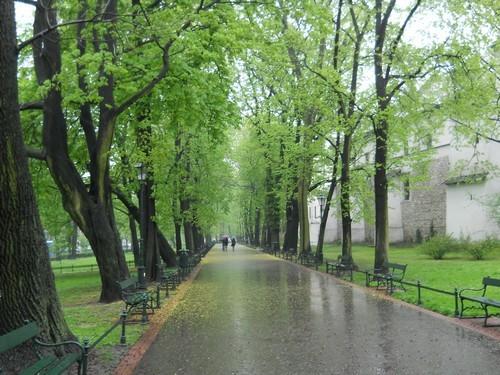 Polish life Krakow
