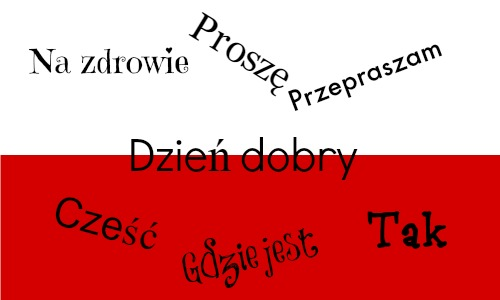 useful polish phrases with pronunciation