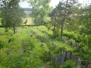 Josefow cemetery and the shtetl