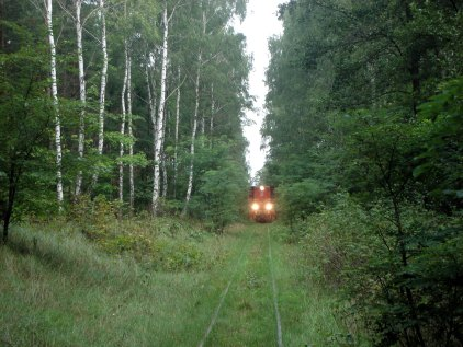 5 km South of Krosniewice