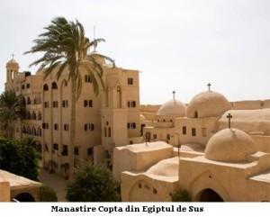 Coptii-2