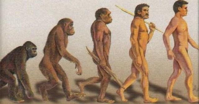 Umanism