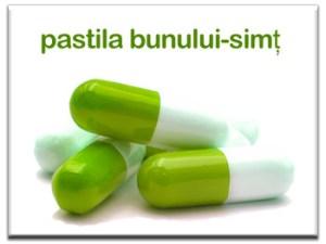 pastila-bunului-simt