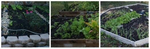 Gardening for money