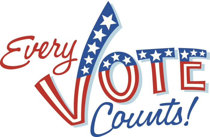 every-vote-counts 2