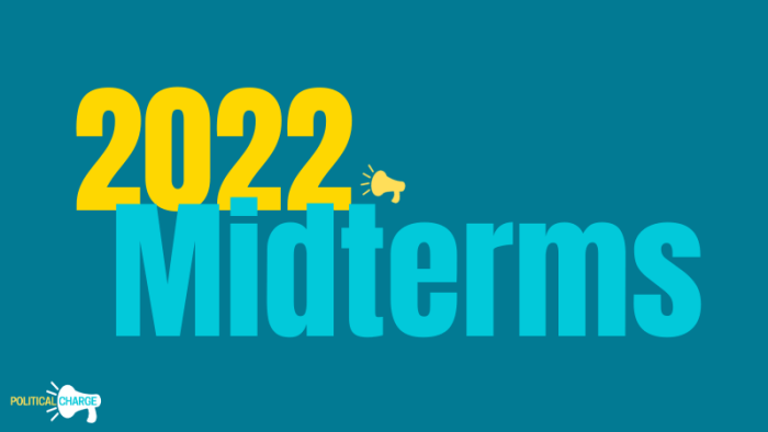 2022 Midterms Election Political Charge