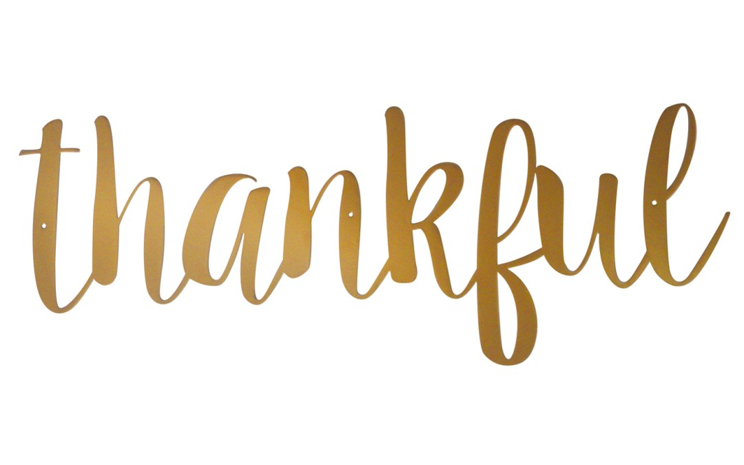 Episode 25: Political and Personal Thankfulness