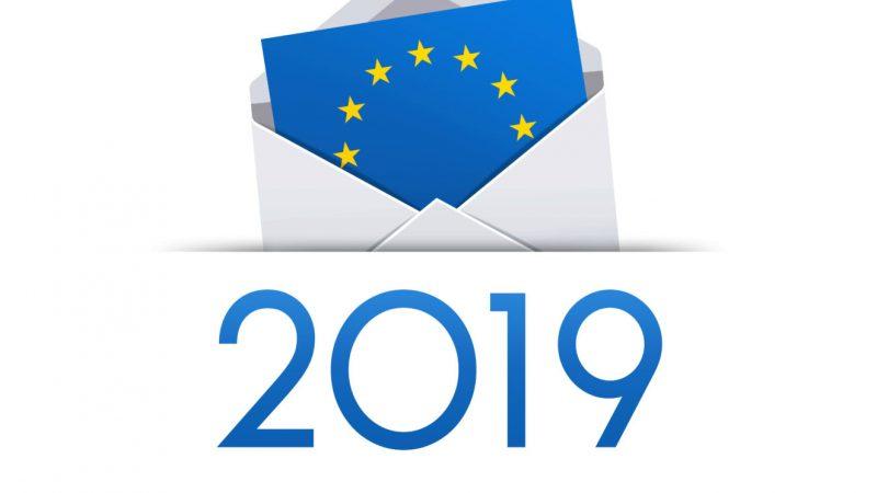 Atentie: vine anul electoral 2019!