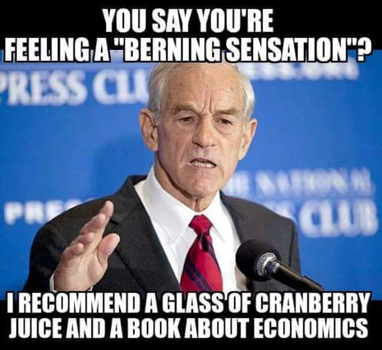 berning-sensation-ron-paul-economics-textbook