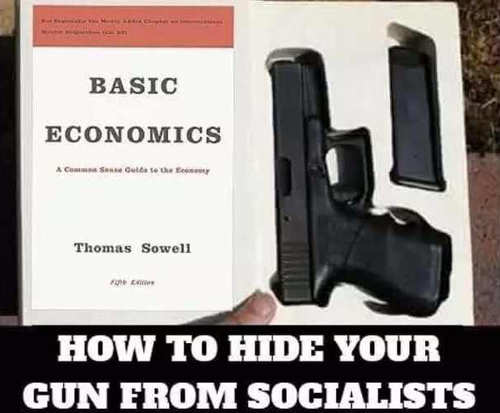 how-to-hide-gun-from-socialists-basic-economics-book