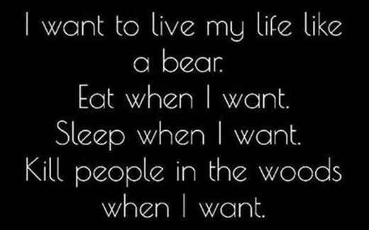 life-like-a-bear-murder-people-in-woods