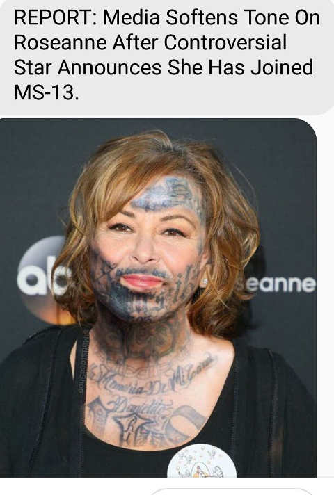 media-softens-tone-on-roseanne-after-joins-ms-13-meme
