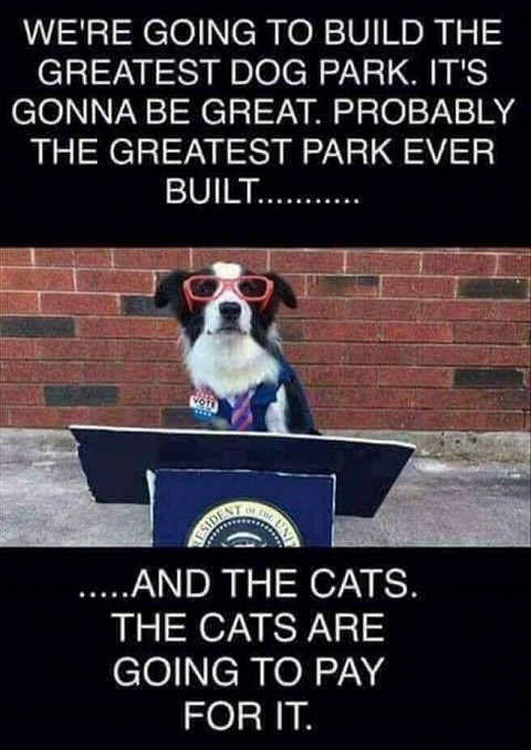 were-building-great-beautiful-dog-park-cats-will-pay-for
