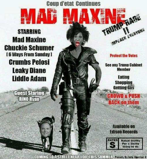 mad-maxine-waters-movie-poster