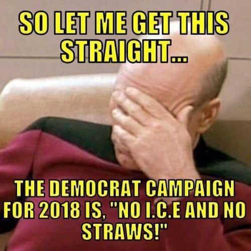 democrat-campaign-for-2018-no-ice-no-straws