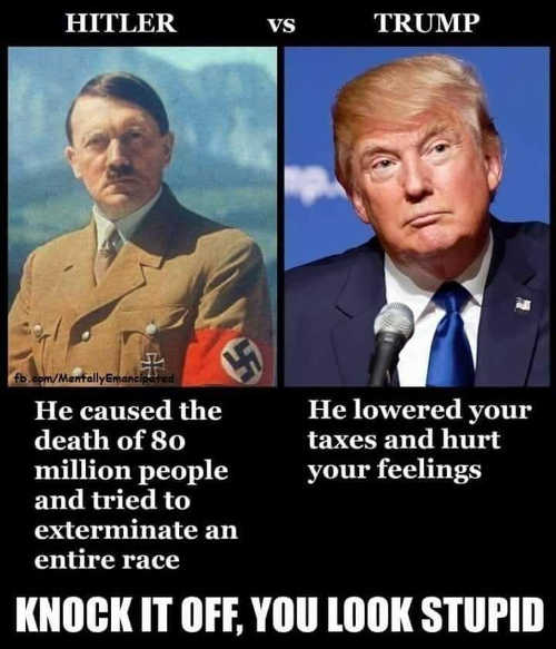 hitler-caused-death-of-80-million-people-trump-lowered-taxes-and-hurt-your-feelings