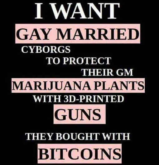 libertarian-what-i-want gay marriage guns marijuana