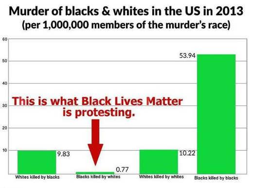 murder-of-blacks-white-in-us-what-black-lives-matter-is-protesting