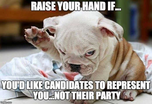 raise-your-hand-if-youd-like-candidates-represent-you-not-their-party