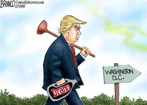 trump-washington-dc-drano-drain-the-swamp