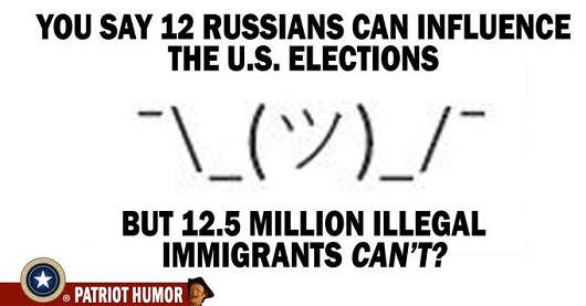 you-say-12-russians-can-influence-election-but-12.5-million-illegal-immigrants-cant