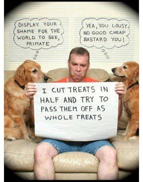 dog-owner-shaping-cut-treats-in-half-cheap-bastard