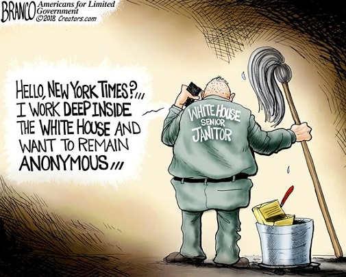 hello-new-york-times-anonymous-janitor-senior-white-house