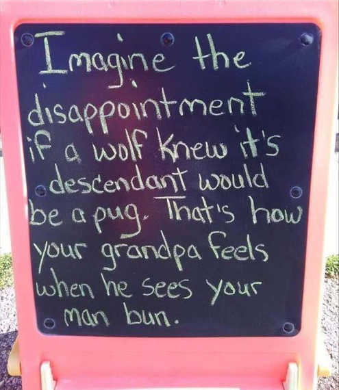 imagine-disappointment-if-wolf-saw-pug-as-descendant-thats-how-grandpa-feels-about-manbun