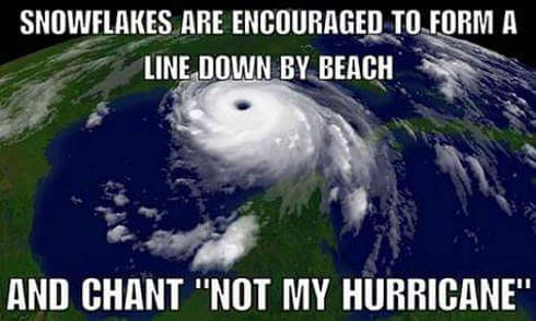 snowflake-liberals-encouraged-to-form-line-by-beach-chant-not-my-hurricane