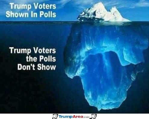 trump-voters-shown-in-polls-not-shown-iceberg