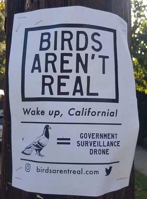 birds-arent-real-government-surveillance-drone-wake-up-california
