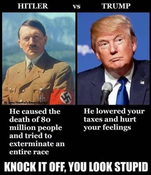 hitler-caused-death-of-80-million-trump-lowered-taxes-hurt-your-feelings-you-look-stupid