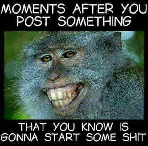 moments-after-posting-something-you-know-will-start-some-shit-money-laughing