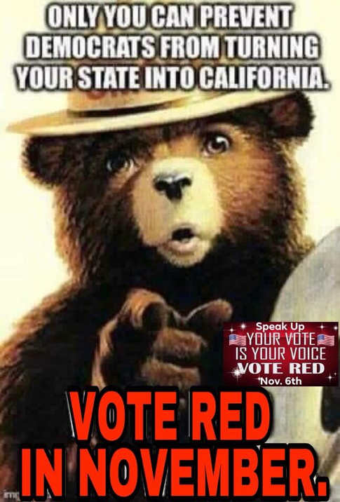 only-you-can-prevent-democrats-from-turning-your-state-into-california