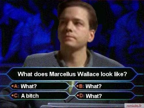what-does-marcellus-wallace-look-like-what-bitch-who-wants-to-be-millionaire.