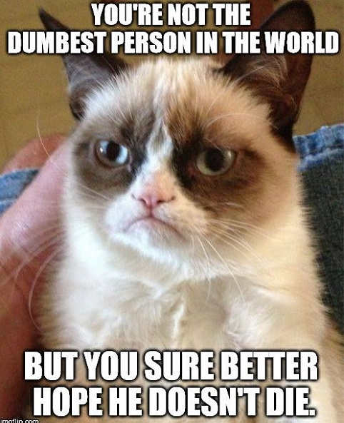 youre-not-dumbest-person-in-world-but-better-hope-he-doesnt-die-grumpy-cat