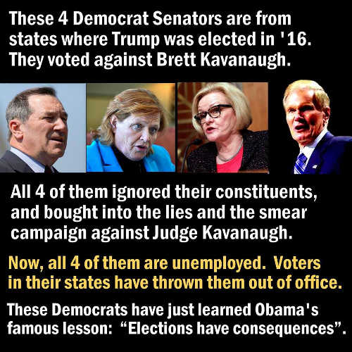 4-democratic-senators-voted-against-kavanaugh-all-lost-elections-obama-consequences