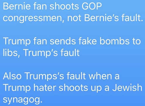 bernie-fan-shoots-gop-not-his-fault-trump-fan-mails-fake-bombs-his-fault-jewish-trump-hater-kills-trumps-fault