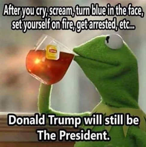 kermit-after-you-cry-scream-turn-blue-in-face-donald-trump-still-your-president