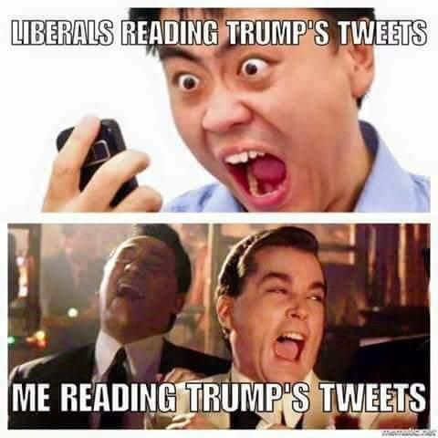 liberals-reading-trump-tweets-shouting-me-laughing
