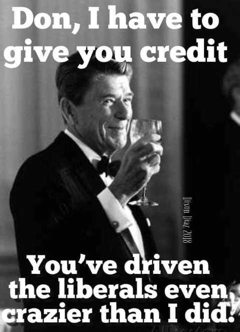 ronald-reagan-don-trump-i-have-to-give-you-credit-driven-liberals-even-crazier-than-i-did