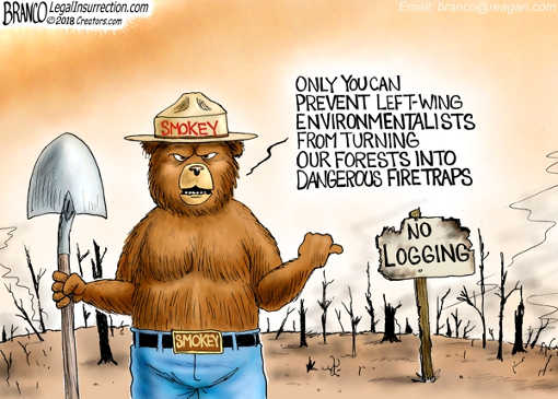 smokey-bear-only-you-can-prevent-left wing environmentalists from turning forests into fire death traps