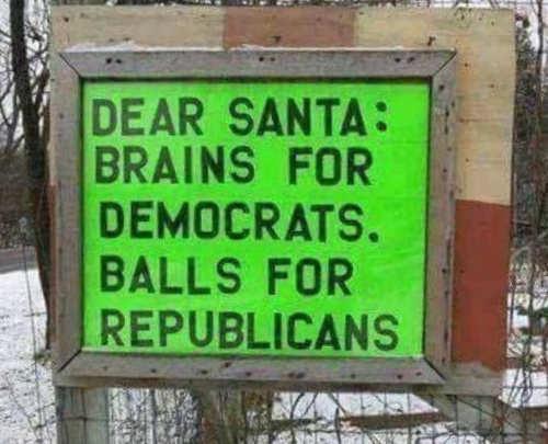dear santa brains for democrats balls for republicans
