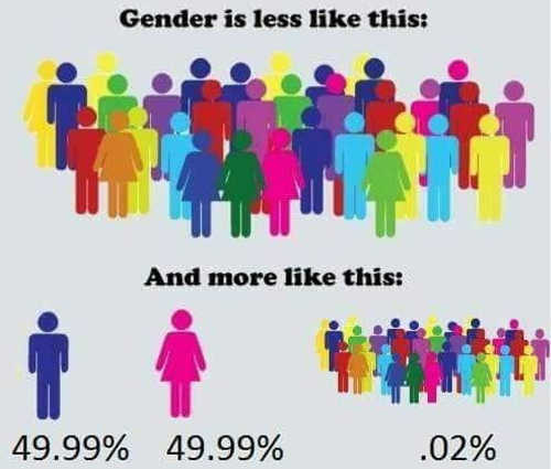 gender-is-less-like-this-more-like-tiny-fraction-transgender-rest-male-female