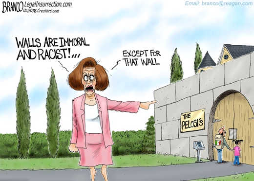 nancy pelosi walls are racist and immoral except this one protecting my home