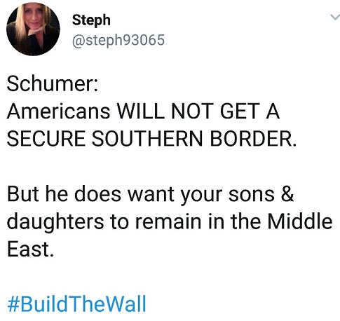 tweet schumer americans will not get secure border be we will send kids to middle east wars