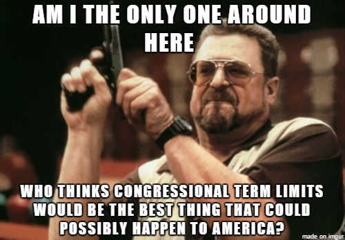 am i only one who things congressional term limits best thing could happen to america