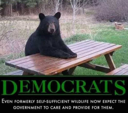 democrats even formerly self sufficient wildlife now expect government to take care of them