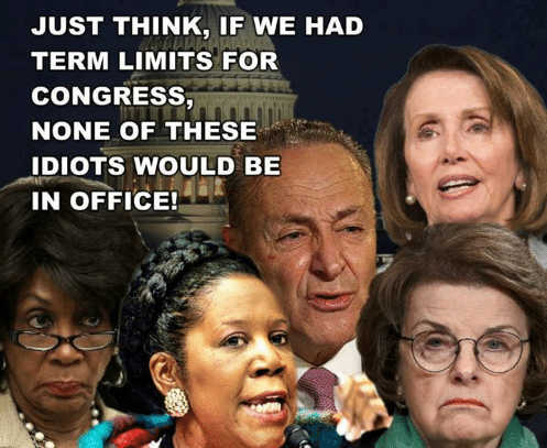 if we had term limits none of these idios in office pelosi schumer lee watters feinstein